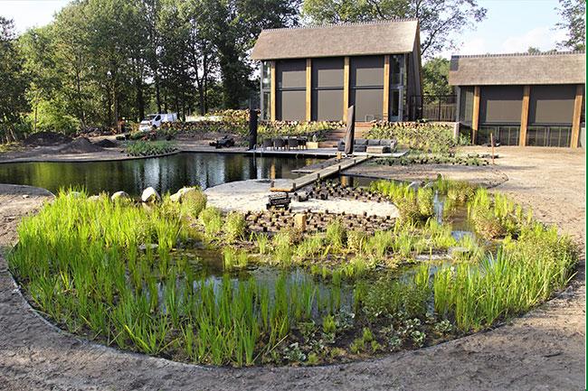 Dutch-Quality-Gardens-Van-Ooijens-Hoveniers-aanleg